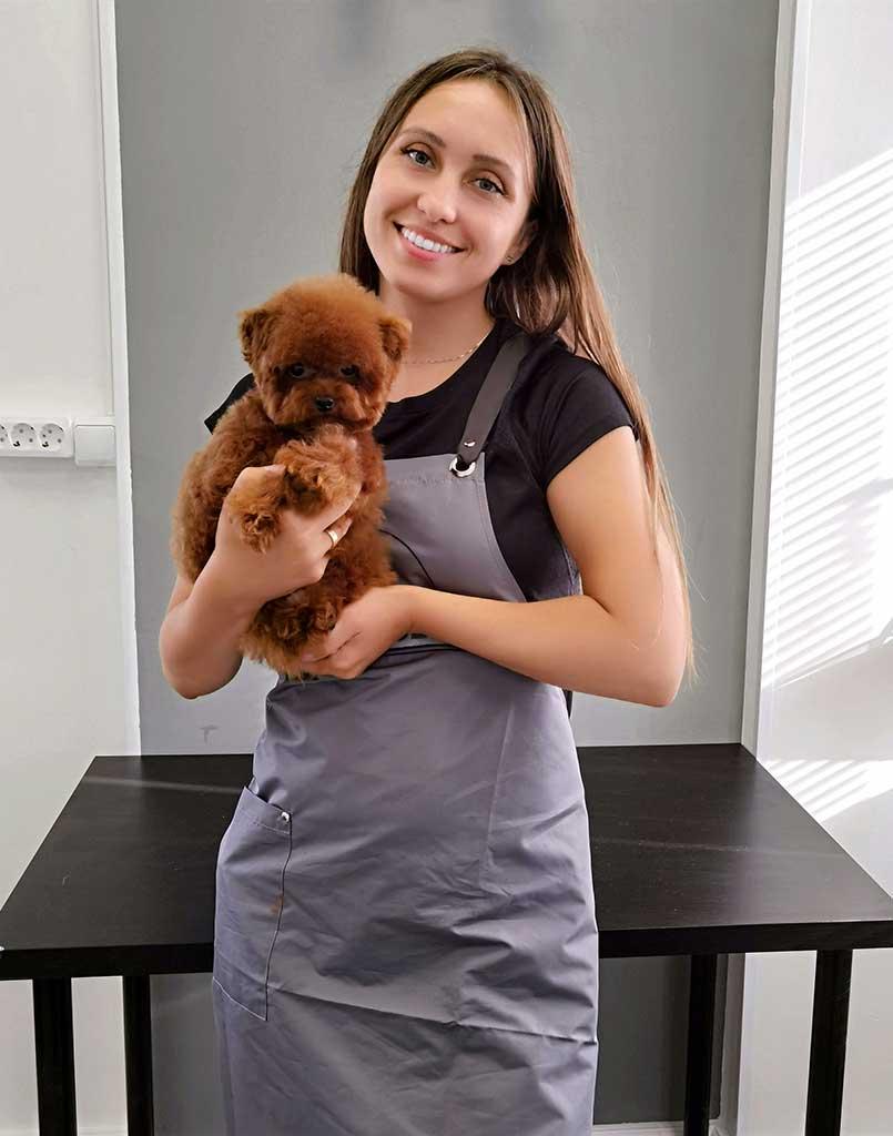 Груминг собак Новая Рига в Teddy Style